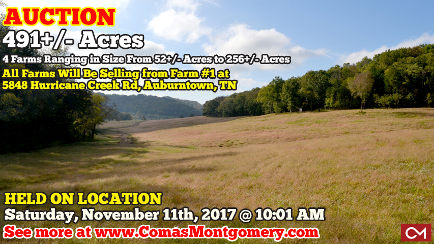 Auction, Real Estate, Farm, Land, Acres, For Sale, Tract, Recreational, Auburntown, Tennessee, Cannon, County, Wilson, Rutherford, Investment, Property, Hurricane, Creek, Comas, Montgomery