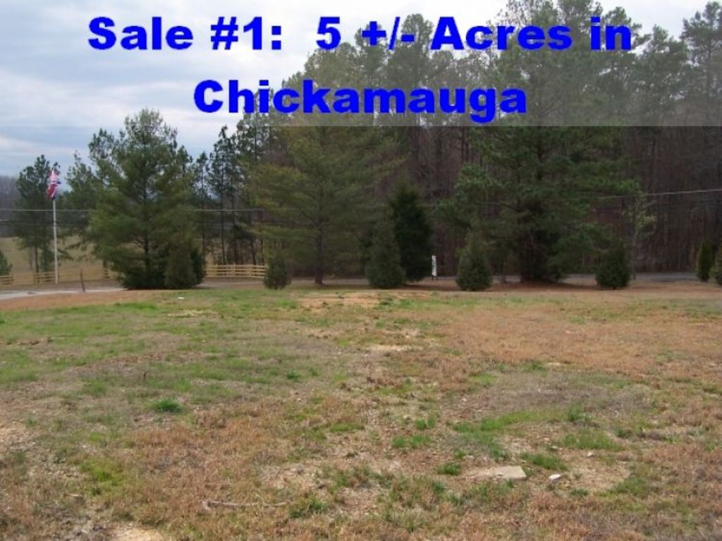 chickamauga personals Northwest ga farm & garden - craigslist cl northwest ga   farm+garden  post  (chickamauga) pic map hide this posting restore restore this posting $20307 .