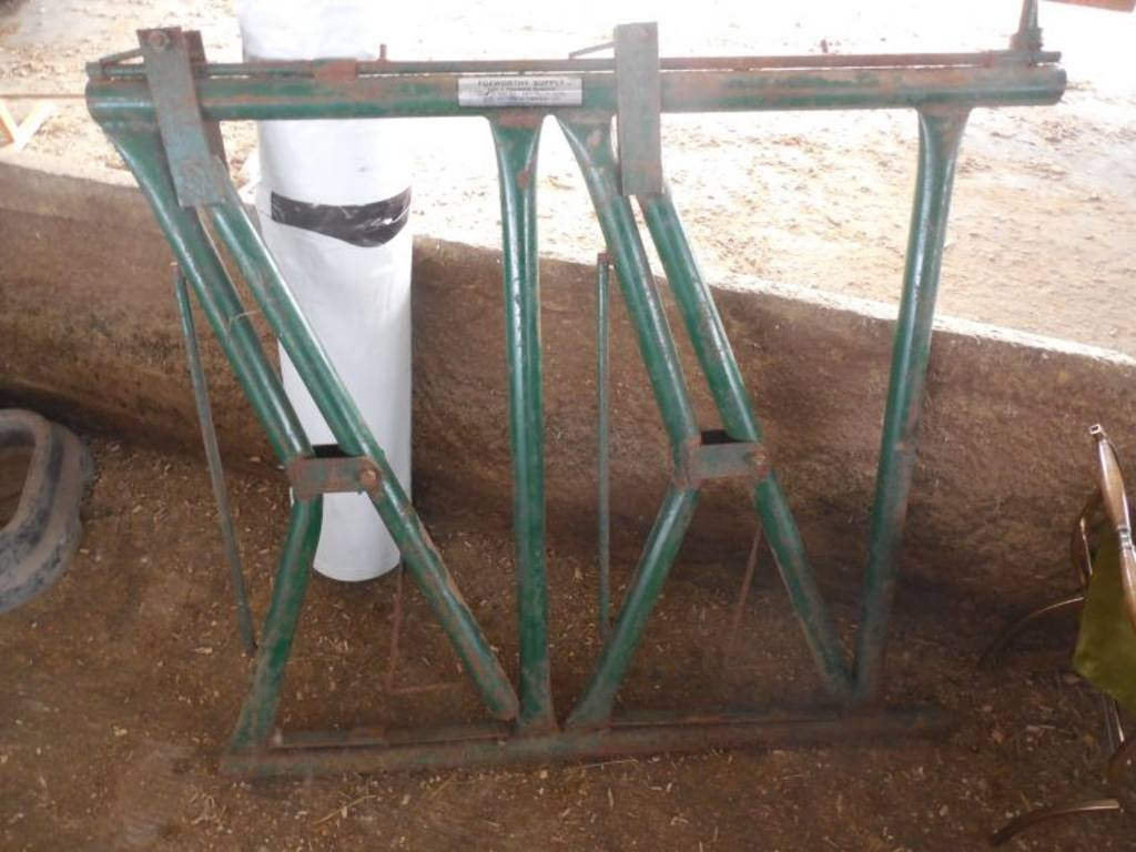 how to use a cattle head gate